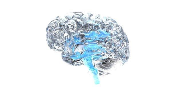 brain.1
