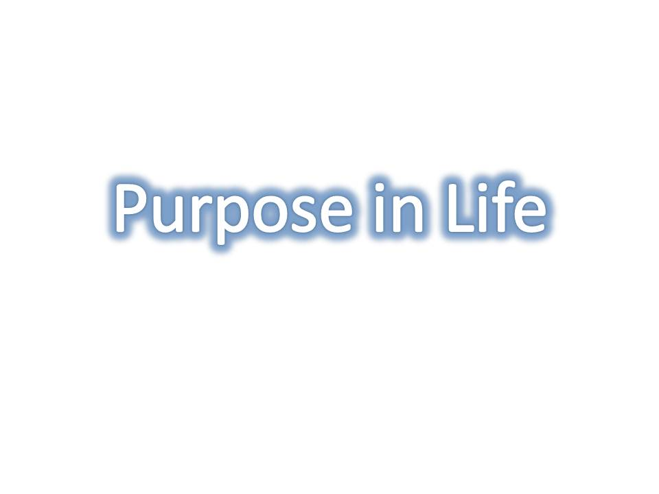 essay on the purpose of education in life