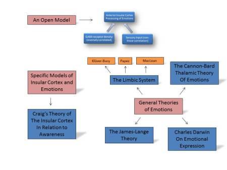 A Model of the Insular Cortex